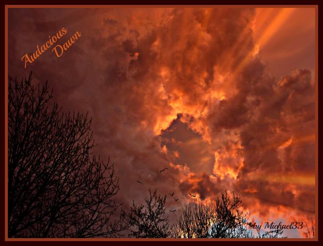 Audacious Dawn